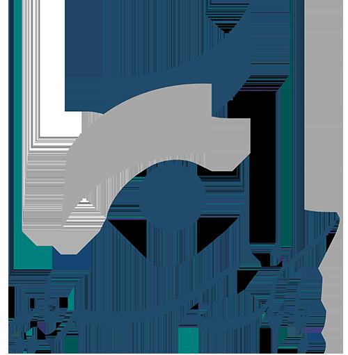 لوگو بانک سرمایه